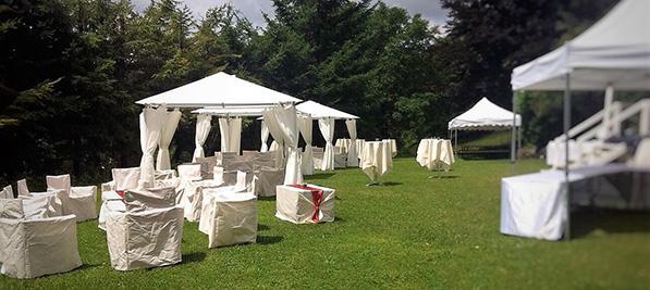Location Salle De Reception Avec Jardin A Grenoble